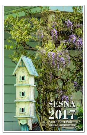sesna-cover-a_s